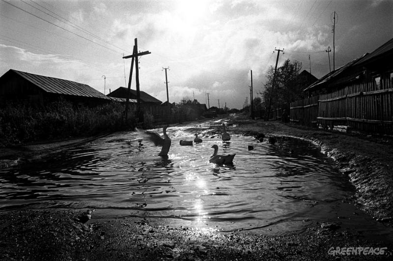 September 2000, Muslyumovo, 40 km from the Mayak nuclear complex, Ural mountains, Russia: Former main street in Muslyumovo, near the Techa River, which has been severely contaminated with radioactive waste. © 2000 - Greenpeace/Robert Knoth GREENPEACE HANDOUT-NO RESALE-NO ARCHIVE